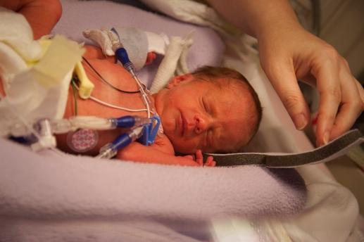 Newborn Preemie